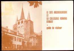 Le Site Archéologique Et La Collégiale Romane D'Amay. - Culture