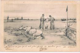 Horse Race  / Paardesport  F W - Hippisme