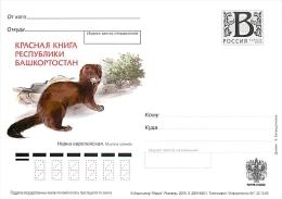 RUSSIA 2009 B42-46 Red Book Of The Republic Of Bashkortostan - Albatrosse & Sturmvögel