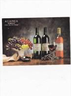 C-3515 - CARTOLINA ALIANCA BAIRRADA -CLASSIC WINES FROM PORTUGAL - Advertising