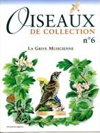 Oiseaux De Collection N° 6 LA GRIVE MUSICIENNE Oiseau - Animali