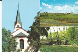 HOCHHEIM AM MAIN EV. KIRCHE SUDANSICHT HUMMELPARK - Hochheim A. Main