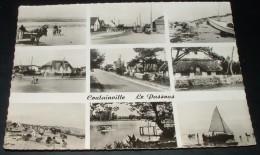 Agon Coutainville - Le Passous - Multivues - France