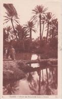 CPA Gabès (Tunesie) - Pont De Palmier Dans L'Oasis - 1928 (3326) - Tunesien