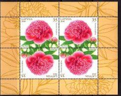 2010 Latvia / Lettland -Flowers - Peoni / Pfingster Rosses - SS Of 4 V - Paper MNH** - Lettland