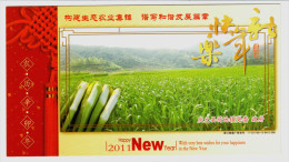 Vegetable Zizania Latifolia,CN 11 Qingyuan Building Ecological Agriculture Advert Pre-stamped Card,specimen Overprint - Vegetables