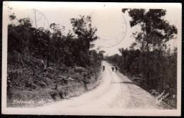 BRAZIL - BRESIL PHOTO CARD * MANAOS ESTRADA DO PARED.....amazonas ? 1934 To Belgium - Brésil