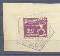 ★★★ Netherland Olympic Games 1928 - Amsterdam - Fencing Olympic Stamp With Pentagonal N1 Cance - Verano 1928: Amsterdam