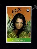 # PINEAPPLE YAZ Type 4 Size 8 Fruit Tag Balise Etiqueta Anhanger Ananas Pina Costa Rica - Fruits & Vegetables