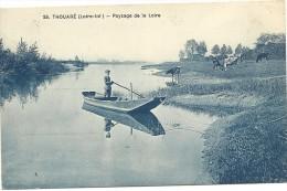 44  THOUARE    PAYSAGE  DE  LA  LOIRE (  Enfant Barque  Vaches ) - Francia