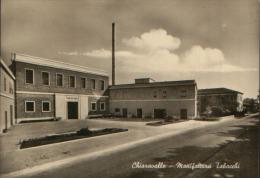 CHIARAVALLE ANCONA MANIFATTURA TABACCHI VG. 1959 - Ancona