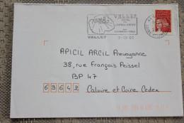 44 Loire Atlantique - Flamme 2002 - VALLET - Coeur Du Muscadet Son Tourisme Vert - Thème Vin - Marcophilie (Lettres)