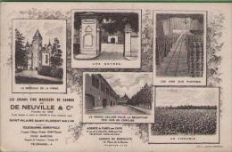 49 SAINT-HILAIRE SAINT-FLORENT - Le Sgrands Vins Mousseux De Saumur - De Neuville & Cie - Autres Communes