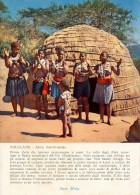 PUBBLICITARIA PRODOTTI MIDY -  SUD AFRICA ZULULAND DONNE ZULU' BATTONO LE MANI 1956 - Namibia