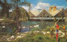 Hospitality House Busch Gardens Tampa Florida