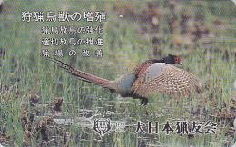 Télécarte Japon / 110-189656 - Oiseau FAISAN - PHEASANT Bird Japan Phonecard - FASAN Vogel Telefonkarte - 2484 - Gallinacés & Faisans