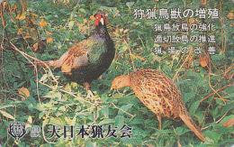Télécarte Japon - Oiseau Oiseaux FAISAN - PHEASANT Bird Birds Japan Phonecard - FASAN Vogel Telefonkarte - 2499 - Gallinacés & Faisans