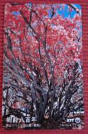 Telefonkarte Asien Japan NTT Blüten Pflanzen Telephone Card 1993 - Jahreszeiten