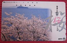 Telefonkarte Asien Japan NTT Blüten Landschaft Telephone Card 1993 - Jahreszeiten