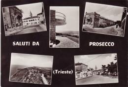 SALUTI DA PROSECCO PROSEK  OPICINA TRIESTE  1965 NON VIAGGIATA - Trieste