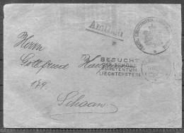 1931 Liechtenstein Vaduz - Schaan 'Besucht Das Schone Furstentum' Cover - Liechtenstein