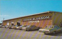 Florida Largo Orange Blossom Groves Citrus Store