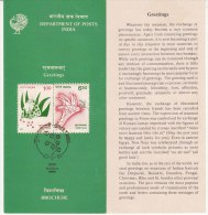 Stamped Information On 1991 Greetings, Frog, Bird, - India