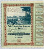 Sté Commerciale Et Agricole De Guinée, Sts à Conakry, Ss à Kindia - Afrique