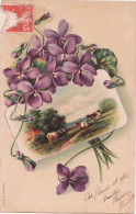 Jolie Carte Postale Ancienne Fantaisie - Fleurs - Violettes - Fantaisies