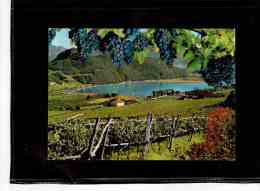 4793   -    KALTERER SEE  - Lido        -     VIAGGIATA - Italie