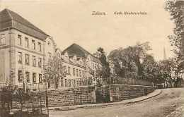Fev14 1333: Saverne  -  Zabern  -  Kath. Knabenschule - Saverne