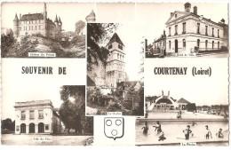 Dépt 45 - COURTENAY - Souvenir De Courtenay - Multi-vues (5 Vues, Dont Piscine) - CPSM 8,9 X 14 Cm - Courtenay