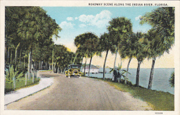 Roadway Scene Along The Indian River Florida Curteich - United States