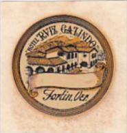 MEXICO VERA CRUA FORTIN HOTEL RVIZ GALINDO VINTAGE LUGGAGE LABEL