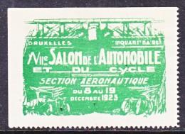 BELGIUM  AEROPHILATELIC  EXPO.   VIGNETTE  BRUXELLES  1923   * - Airmail