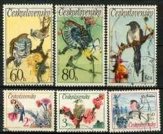 #14-03-00938 - Czechoslovakia - 1972 - SG 2072 - US - QUALITY:100% - Usati