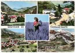 Souvenir De Thorame-Haute - Multivues (lavandes) - France