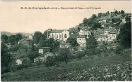 NOTRE DAME DE PEYRAGUDE - Vue Générale      (66658) - Autres Communes