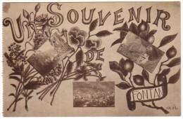 Un Souvenir De Fontan - France