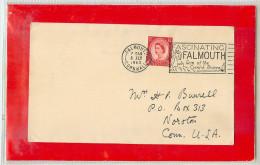 GREAT BRITAIN  -   FALMOUTH  -  PALMA - Vegetazione