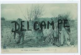 CPA -La Vigne En Bourgogne - La Taille - - France