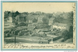 "Ransart "" Panorama (masse Diarbois) "" écrite 1903 - Timbrée N° 73 Mais Non Oblit. - TB > - Charleroi"