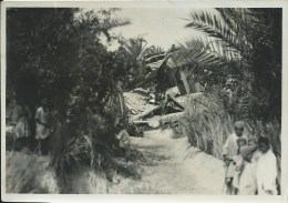 44Cmé  Photo Originale Avion Farman Goliath Aviation Sud Tunisienne Remada Crash Accident Dans L'oasis - Foto's