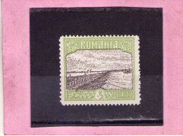 1913 - SILISTRA / Dobroudja Mi No 229 Et Yv No 224 MH - 1881-1918: Carol I.