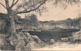 L270_599 - 418 Forêt De Fontainebleau - Grotte Béatrix (Long Rocher) - Fontainebleau