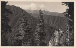 CPA S.C. A T SECTIA SIBIU, SKV ORTSGRUPPE HERMANNSTADT, CARPATHIAN MOUNTAINS, BALEA PEAK, DEVIL ROCK - Roumanie