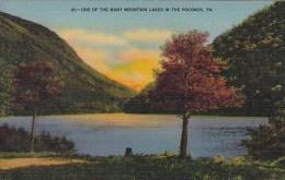 One Of The Many Mountain Lakes In The Poconos Pennsylvania 1944
