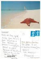 Starfish, Varadero, Cuba Postcard Posted 2011 Stamp - Cuba