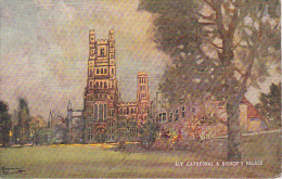 PC Ely Cathedral & Bishop's Palace - 1949 (3494) - Ely