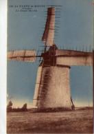 La Barre De Monts.. Le Grand Moulin.. Moulin à Vent - France